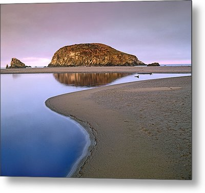 Harris Beach State Park Oregon Metal Print by Tim Fitzharris