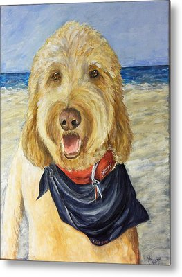 Harry At The Beach Metal Print