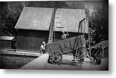 Metal Print featuring the photograph Harvest by Bonfire Photography