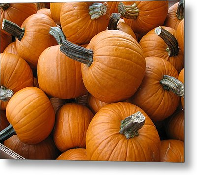 Harvest Time Metal Print by Shawn Hughes