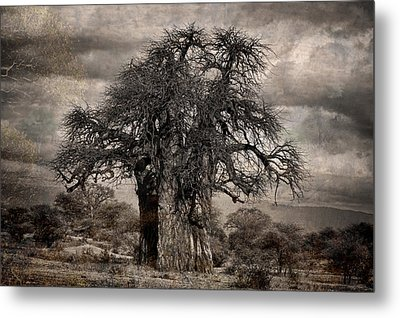 Haunted African Baobabs Tree Metal Print by Jess Easter