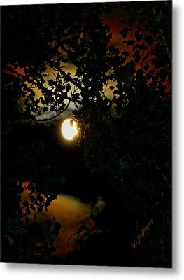 Metal Print featuring the photograph Haunting Moon IIi by Jeanette C Landstrom