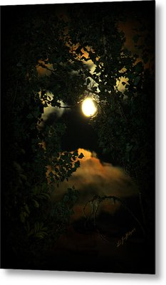 Metal Print featuring the photograph Haunting Moon by Jeanette C Landstrom