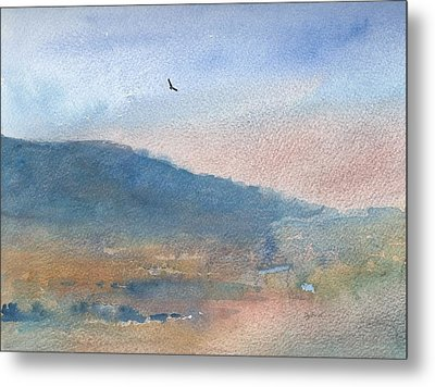 Hawk At Sunset Over Stenbury Down Metal Print by Alan Daysh