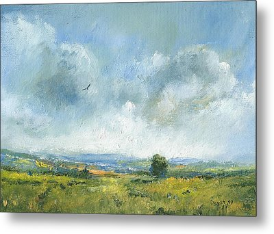 Hawk Over The Yar Valley Metal Print by Alan Daysh