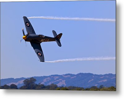 Hawker Sea Fury Metal Print by Garry Gay