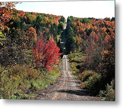 Metal Print featuring the photograph Hawks Rd by Christian Mattison