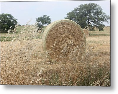 Hay Days In Texas Metal Print by Shawn Hughes