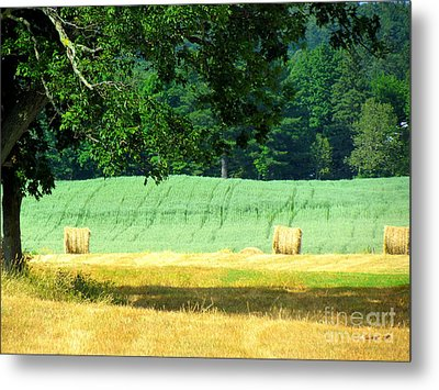Metal Print featuring the glass art Hay Landscape by France Laliberte