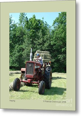 Metal Print featuring the photograph Haying by Patricia Overmoyer