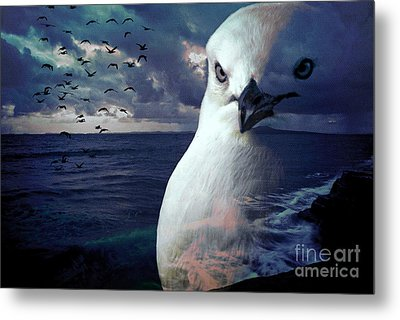 He Spotted Land And Knew He Was Home Metal Print by Karen Lewis
