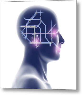 Head With Network Diagram Metal Print by Pasieka
