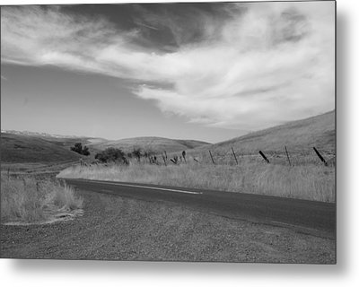 Metal Print featuring the photograph Heading Inland by Kathleen Grace