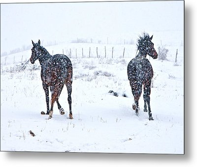 Heading To The Hills Metal Print by Betsy Knapp