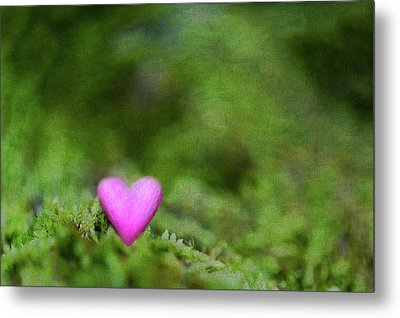 Heart In Moss Metal Print by Alexandre Fundone
