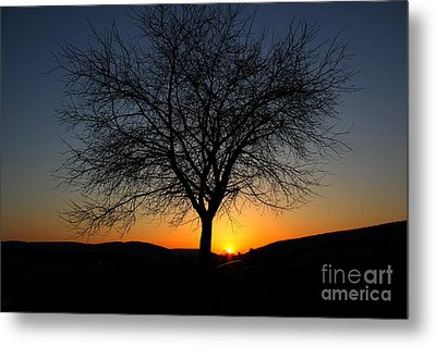 Metal Print featuring the photograph Heart Of The Land by Everett Houser