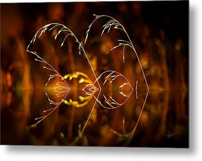 Metal Print featuring the photograph Heartbeat by Vicki Pelham