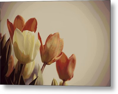 Metal Print featuring the photograph Heavenly Glow by Marilyn Wilson