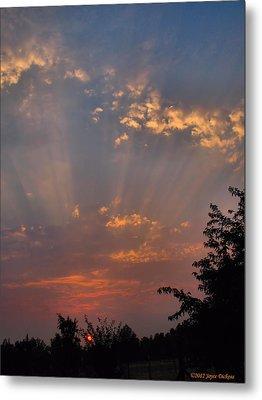 Heavenly Rays Metal Print by Joyce Dickens