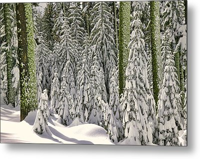 Heavy Snow Metal Print by Garry Gay