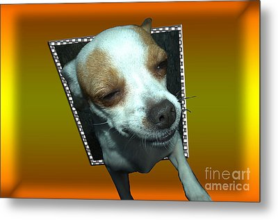 Help I'm Falling Metal Print by Donna Brown