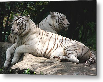 Her Majesties Metal Print