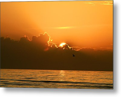 Here Comes The Sun Metal Print by Jose Rodriguez