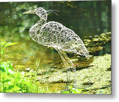 Heron Day Shot At The Pond   Metal Print by Tommy  Urbans
