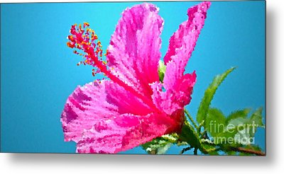 Hibiscus Crystal Luster Metal Print by Gwyn Newcombe
