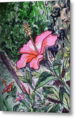 Hibiscus Sketchbook Project Down My Street  Metal Print by Irina Sztukowski