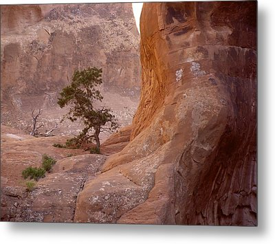 Hidden Curves Of Arches Metal Print by Ramie Liddle