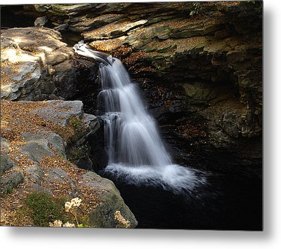 Metal Print featuring the photograph Hidden Falls by Raymond Earley