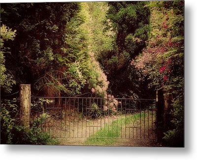 Metal Print featuring the photograph Hidden Garden by Marilyn Wilson
