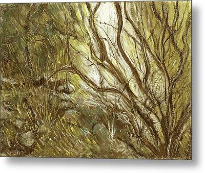 Hideaway Plants In Brown Yellow And Green Branches Leaves Trunks Stones Metal Print by Rachel Hershkovitz