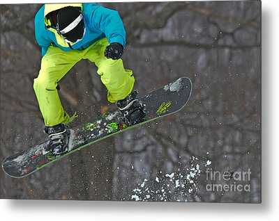 High Flyin' Metal Print by Lois Bryan