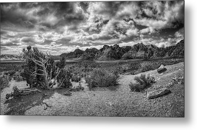 High Point Monochrome Metal Print by Stephen Campbell