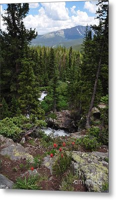 Hiking In Colorado Metal Print