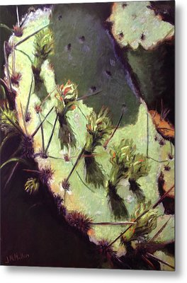 Hill Country Cactus Metal Print by Jacquie McMullen