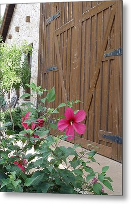 Metal Print featuring the photograph Hill Country Hibiscus by Elizabeth Sullivan