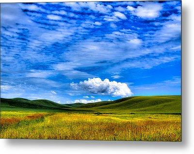 Hills Of Wheat In The Palouse Metal Print by David Patterson