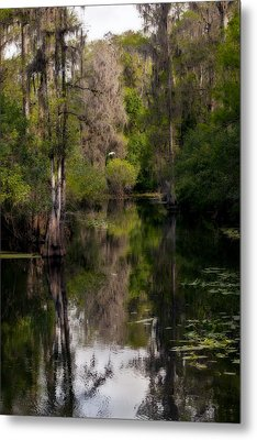 Metal Print featuring the photograph Hillsborough River In March by Steven Sparks