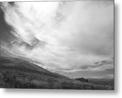 Metal Print featuring the photograph Hillside Meets Sky by Kathleen Grace