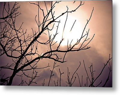 Hindered Sunset Metal Print by Victoria Lawrence