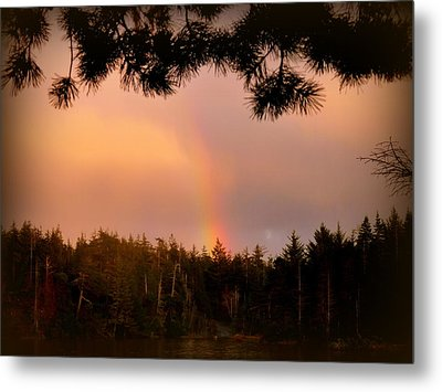 His Promise Metal Print by Cindy Wright