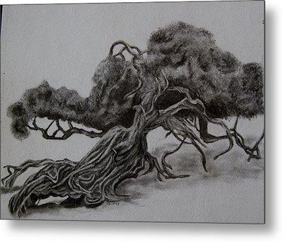 Hobbit Tree Metal Print by Joan Pye