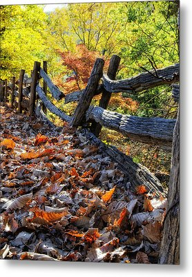 Holding Back The Colors Of Fall Metal Print