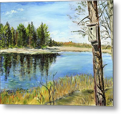 Home At Dragonfly Pond Metal Print