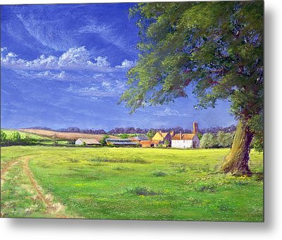 Home Field Metal Print by Anthony Rule