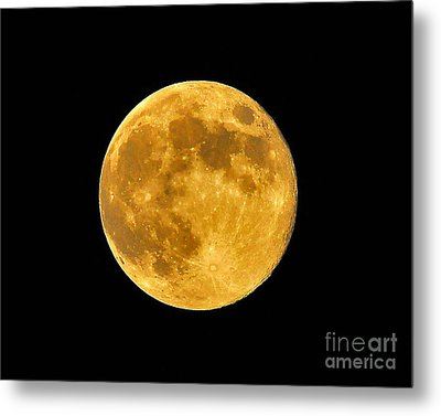 Honey Moon Close Up Metal Print by Al Powell Photography USA