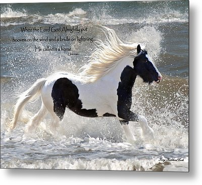Hooves On The Wind Metal Print by Terry Kirkland Cook